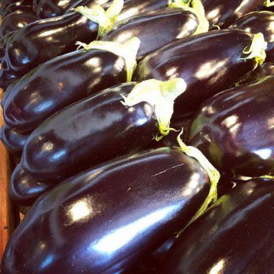 Fresh Eggplants on Display