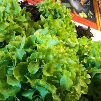 Hydroponic Lettuce in Produce Shop