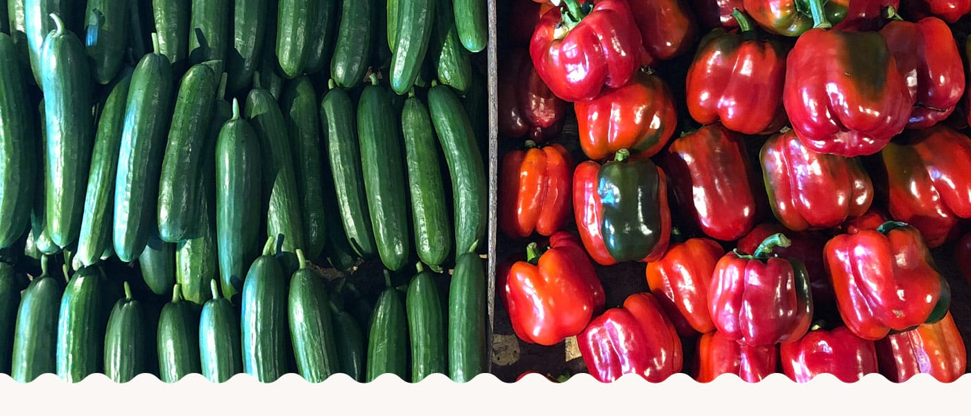 Cucumbers & Capsicums on Display